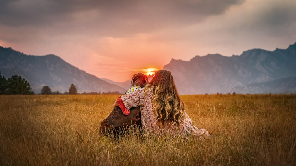 a brown dog being hugged by a human while both sitting in the grass and looking back into the mountains and sunset in the background, Colorado outdoor dog photography, Colorado adventure pups, Serving Denver, Colorado Springs, Fort Collins, and all Colorado pups; Adventure Pup Photography